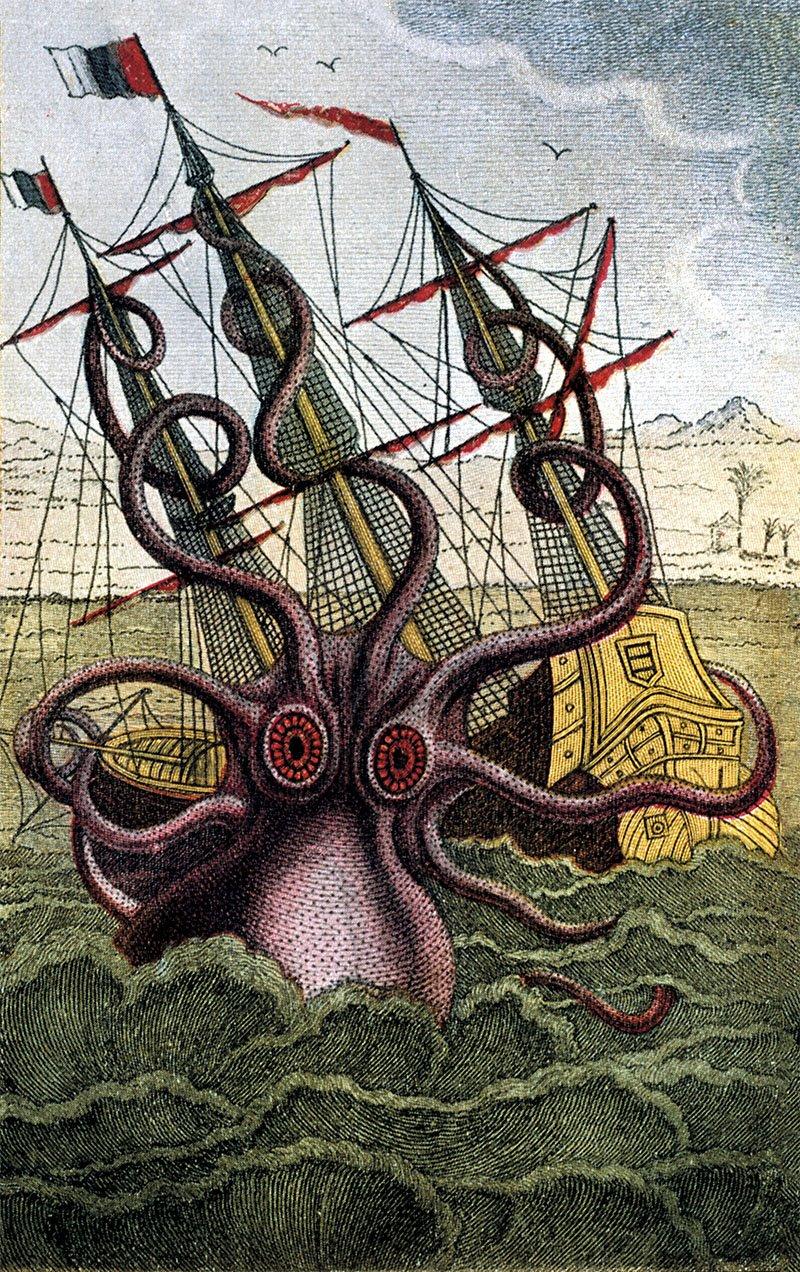 Los marineros explicaban exageradas historias sobre encuentros en alta mar con pulpos y calamares de decenas de metros de longitud, capaces de engullir un barco. En Historia natural general y particular de los moluscos (1801), Pierre Denys Monfort relataba el ataque sufrido por una embarcación francesa en las costas de Angola e incluía este dibujo que recreaba la escena, según las explicaciones de