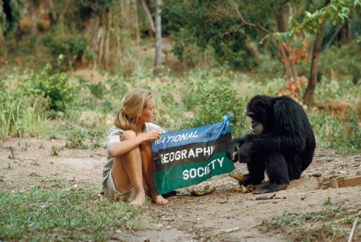 Jane Goodall (1934-Actualidad)