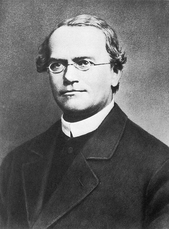 Gregor Mendel, el padre de la genética
