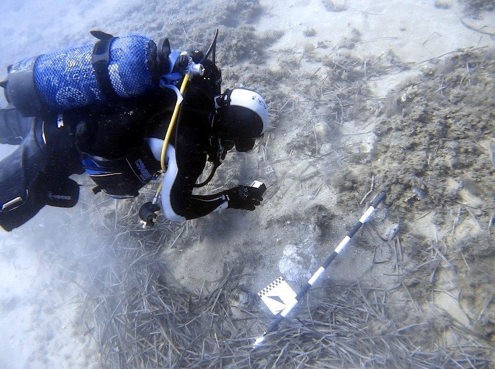 Un arqueólogo documenta los restos de un cargamento enterrado en la bahía del Portitxol de Jávea.