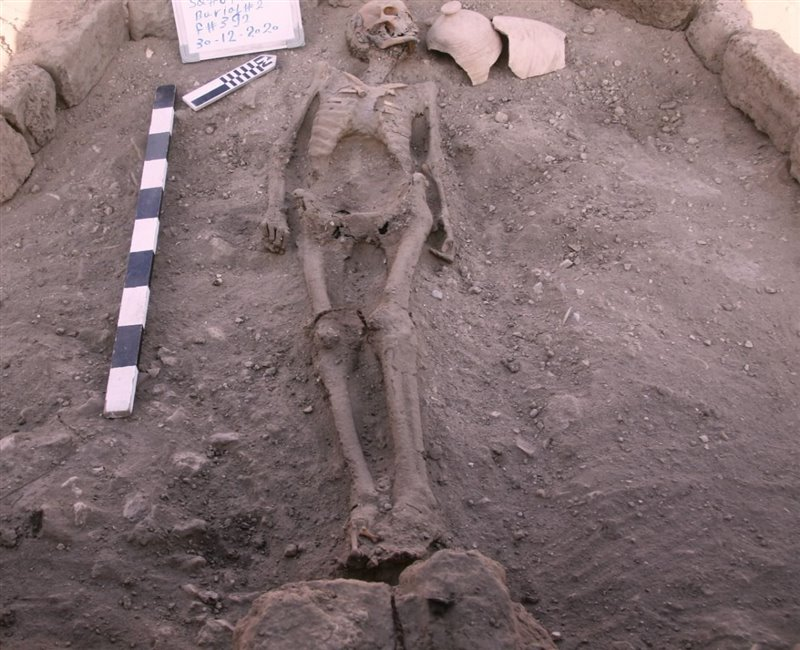 Esqueleto humano localizado durante los trabajos de excavación.